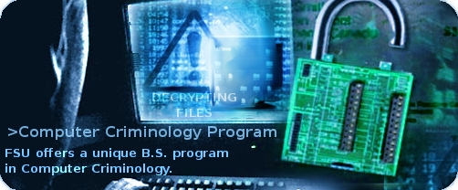 Program in Computer Criminology